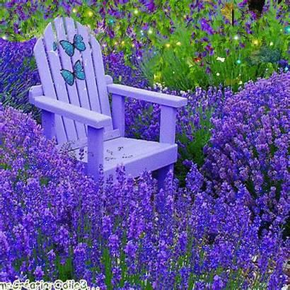 Jardins Mirta Gifshermosos Salvo Tr