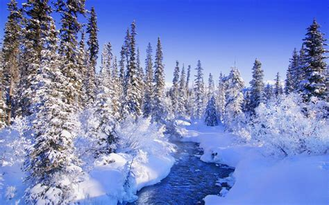 winter aesthetic wallpapers