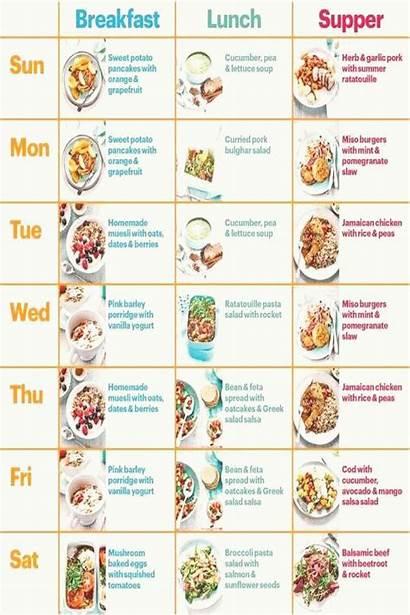 Diet Nowzaradan Dr Plan Deutsch Plans Crucible