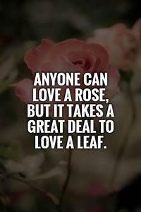 Leaves Quotes. QuotesGram