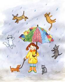 raining cats and dogs quotes quotesgram