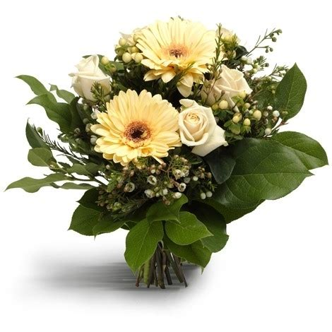 bloemen in assen bloemen bestellen assen kiki bloemen