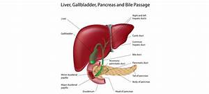 Gallstone Surgery  U2013 Laparoscopic Gallbladder Removal