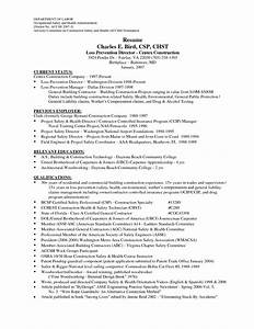 Professional Construction Worker Resume Sample