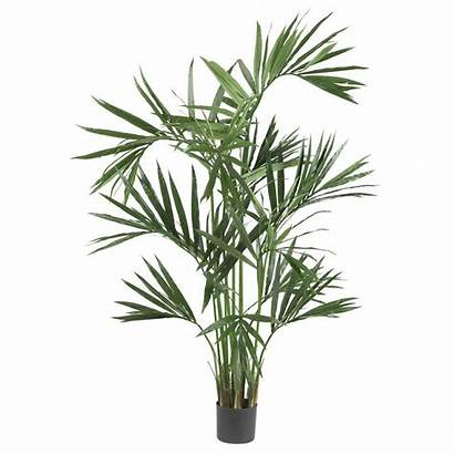 Palm Tree Kentia Silk Artificial Fake Plant