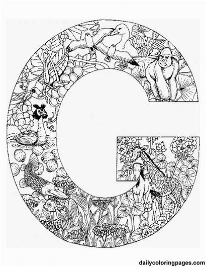 Coloring Pages Adults Complicated Alphabet Letters Animal
