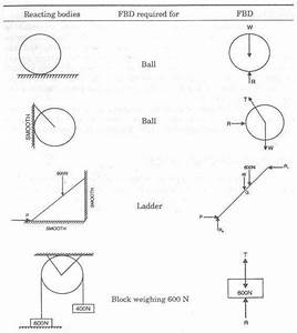29 Free Body Diagram Worksheet With Answers