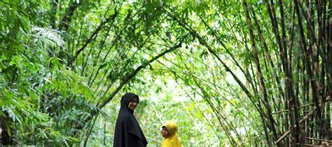 hutan bambu penglipuran bangli tempat wisata