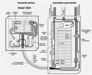 Guardian Generator Transfer Switch Wiring Diagram