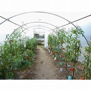 Serre Tunnel De Jardin : votre serre de jardin tunnel en largeur 4 50 m chez jardin ~ Melissatoandfro.com Idées de Décoration