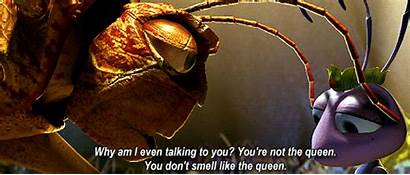 Pixar Bug Hopper Bugs Fanpop Lotso Donald