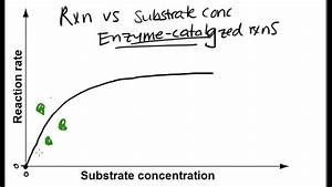Reaction Rate Versus Substrate Concentration