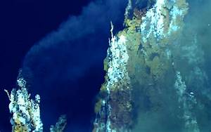 Study: Viruses Prey on Bacteria at Deep Hydrothermal Vents ...