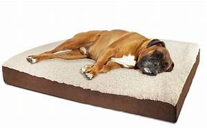 25 best rated dog beds for large dogs 2018 pet life today With best dog bed for large older dogs