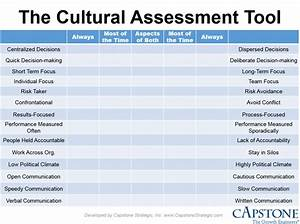 functional due diligence successful acquisitions With organizational culture assessment instrument template