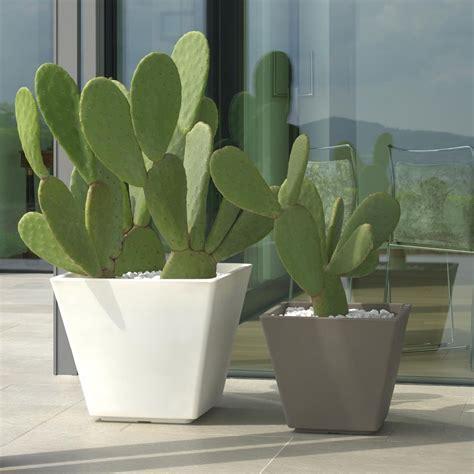 vasi in plastica grandi dimensioni vaso per piante avila