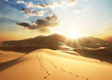 hijrah ilmfeed sirah rasul