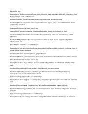 classification of tissues review sheet exercise 5 answers review sheet name an m r h vi to i 1