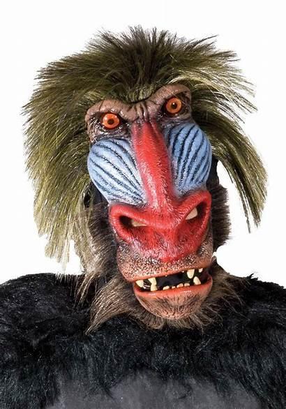 Monkey Baboon Mask Adult Costumes Halloweencostumes Halloween