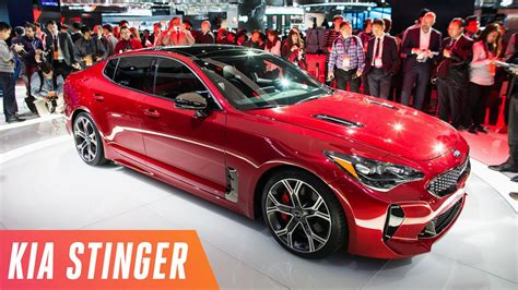Kia's Gorgeous Stinger Sports Sedan Youtube