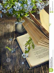 Vintage Books And Summer Blue Flowers. Stock Photo - Image ...
