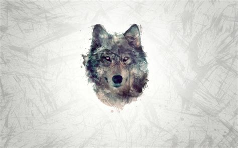Computer Aesthetic Wolf Wallpaper by Wolf Wallpaper High Quality Resolution Animals Hd Wallpaper