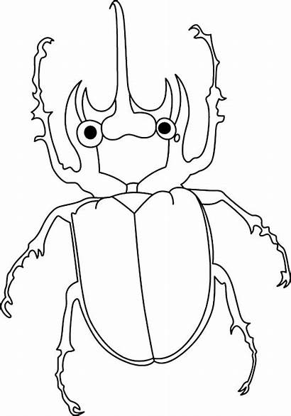 Beetle Coloring Pages Amazing Animals Sheet Chan