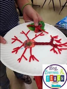 Beg  Borrow  And Teach   Growth Mindset  Art  And Science