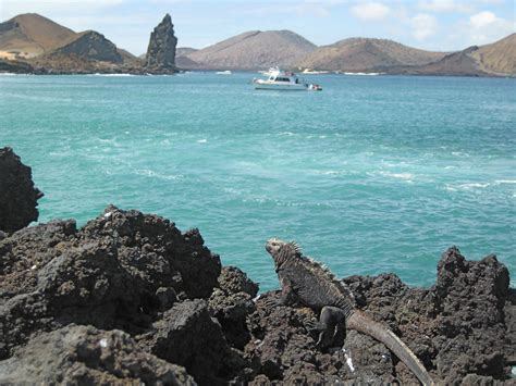 Galápagos Islands Travel Traveling Quotes