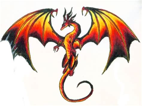 dragon images themes company design concepts  life