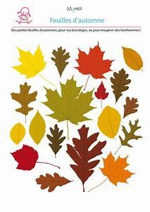Feuilles D Automne à Imprimer : mod le de feuille d 39 automne jeux fle feuille automne mod le de feuille dessin feuille ~ Nature-et-papiers.com Idées de Décoration