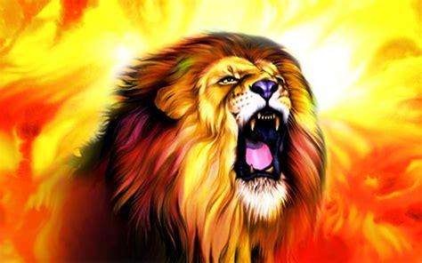 roaring lion wallpapers wallpaper cave