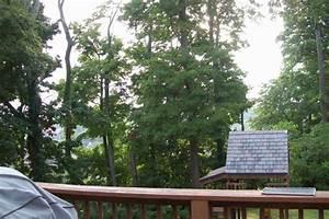 Nashville tn real estate bradford hills 2804 call hill for Real floors nashville tn