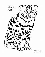 Coloring Pages Cat Tac Tic Toe Drawing Fishing Getdrawings 146kb 1000px sketch template
