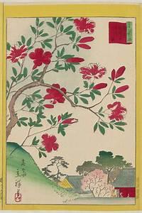 Utagawa Hiroshige II: Kirishima Azaleas at Gokoku-ji ...