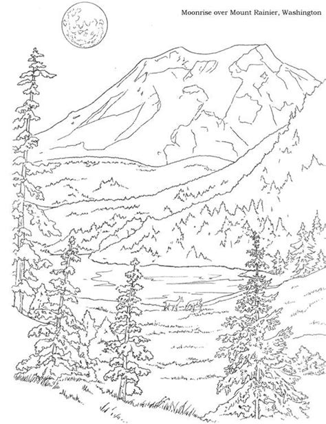 woods landscape coloring pages google search coloring