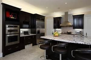 15, Unbelievable, Kitchen, Designs, Featuring, Dark, Cabinets