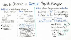 How To Become A Senior Project Manager