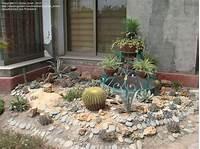 lovely cactus garden design Lovely Cactus Garden Design - Garden Design #18
