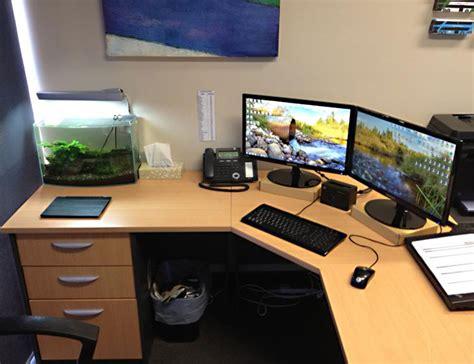 feng shui plants for office desk feng shui tips for office the royale