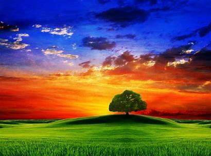Nature 3d Wallpapers Desktop Background Backgrounds Colorful