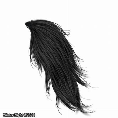 Tail Horse Deviantart Favourites