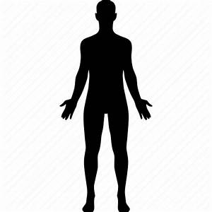 Body  Diagram  Human  Male  Man  Medical  Sex Icon