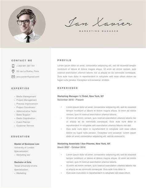 Modern Cv Format by 28 Best Modern Resume Templates Images On