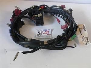 Pieces Moto Honda : faisceau lectrique 1000 cbr f honda pi ce moto occasion p36080 ~ Medecine-chirurgie-esthetiques.com Avis de Voitures