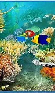 Tropical Fish 3D Screensaver Full - Download-Screensavers.biz