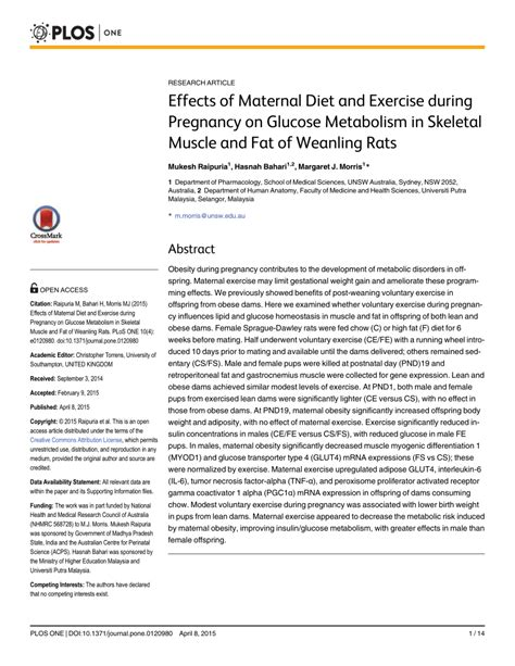 glucose metabolism exercise pregnancy weanling rats maternal during skeletal muscle diet effects fat