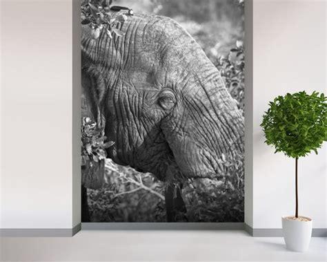 elephant nick jackson wall mural wallsauce uk