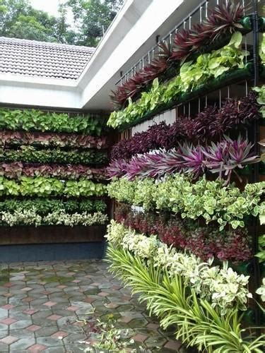 natural vertical garden rs  square feet plants