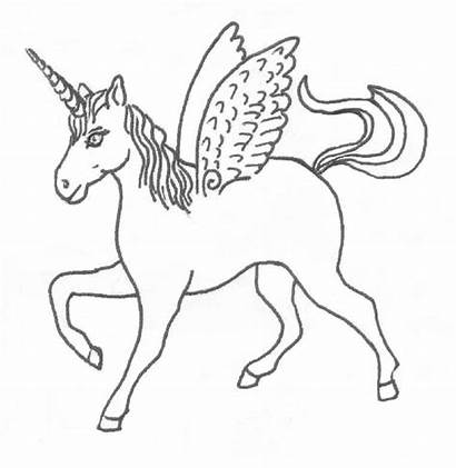 Unicorn Outline Coloring Pages Wings Drawing Horse